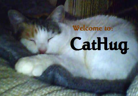 Cathug cat photos hug image cats forum community Images wiki photo photo-album upload photo-albums